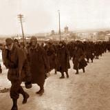 Декабрь 1942. Богучар.